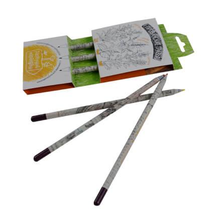 """Набор из 3 чернографитных карандашей """"Растущий карандаш. Прованские травы"""""""