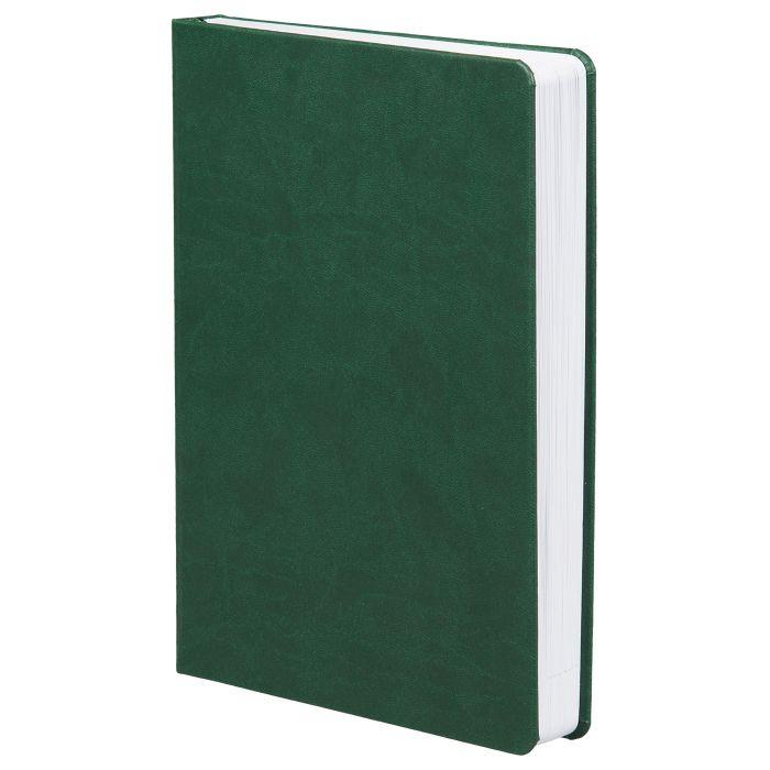 Ежедневник датированный Basis, формат A5, зелёный