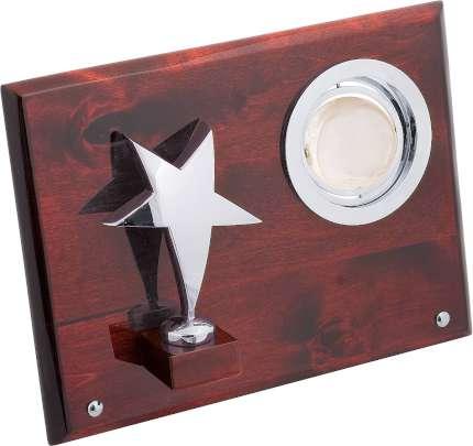 """Плакетка """"Звезда"""" с глобусом, Linea del Tempo, (цвет серебряный, коричневый) (A01SBR)"""